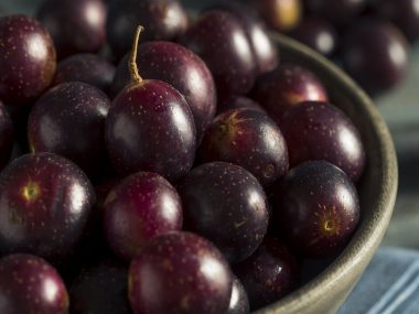 Muscadine Grape Juice Benefits