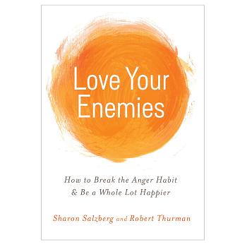 Love Your Enemies Book