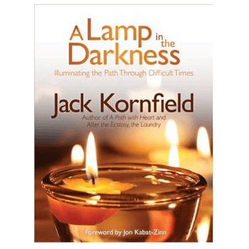 A Lamp in the Darkness Book
